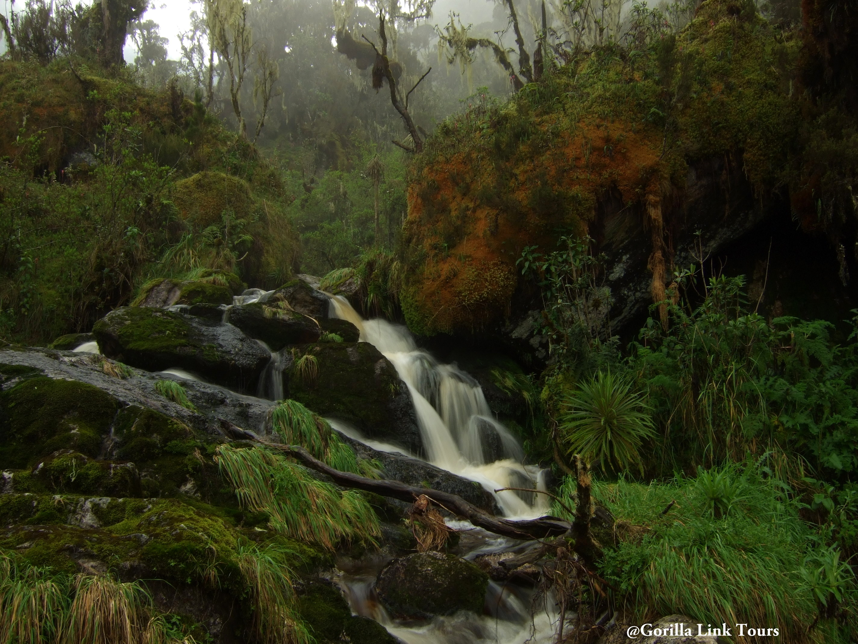 Waterfall-seen-on-Mount-Rwenzori-Hike-5-Days-Hike-Gorilla-Link-Tours