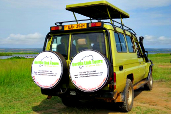 Uganda safaris Land cruiser- Gorilla trekking safaris in Bwindi Impenetrable National Park safari vehicles