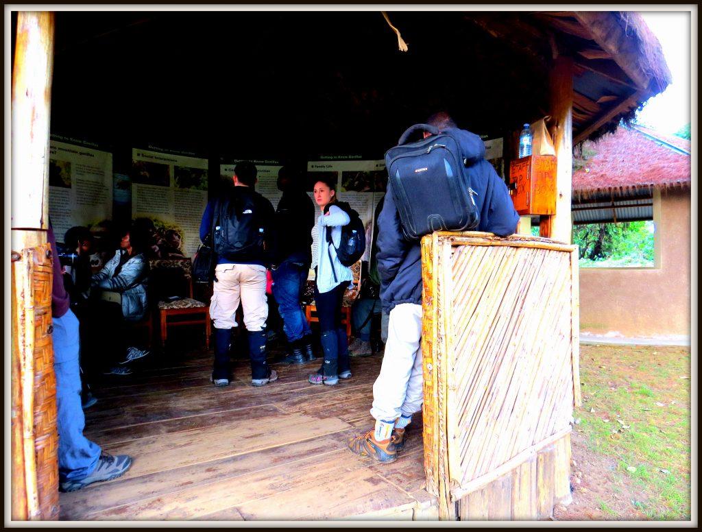 Clients after Gorilla trekking briefing ready to start the trek @Gorilla Link Tours