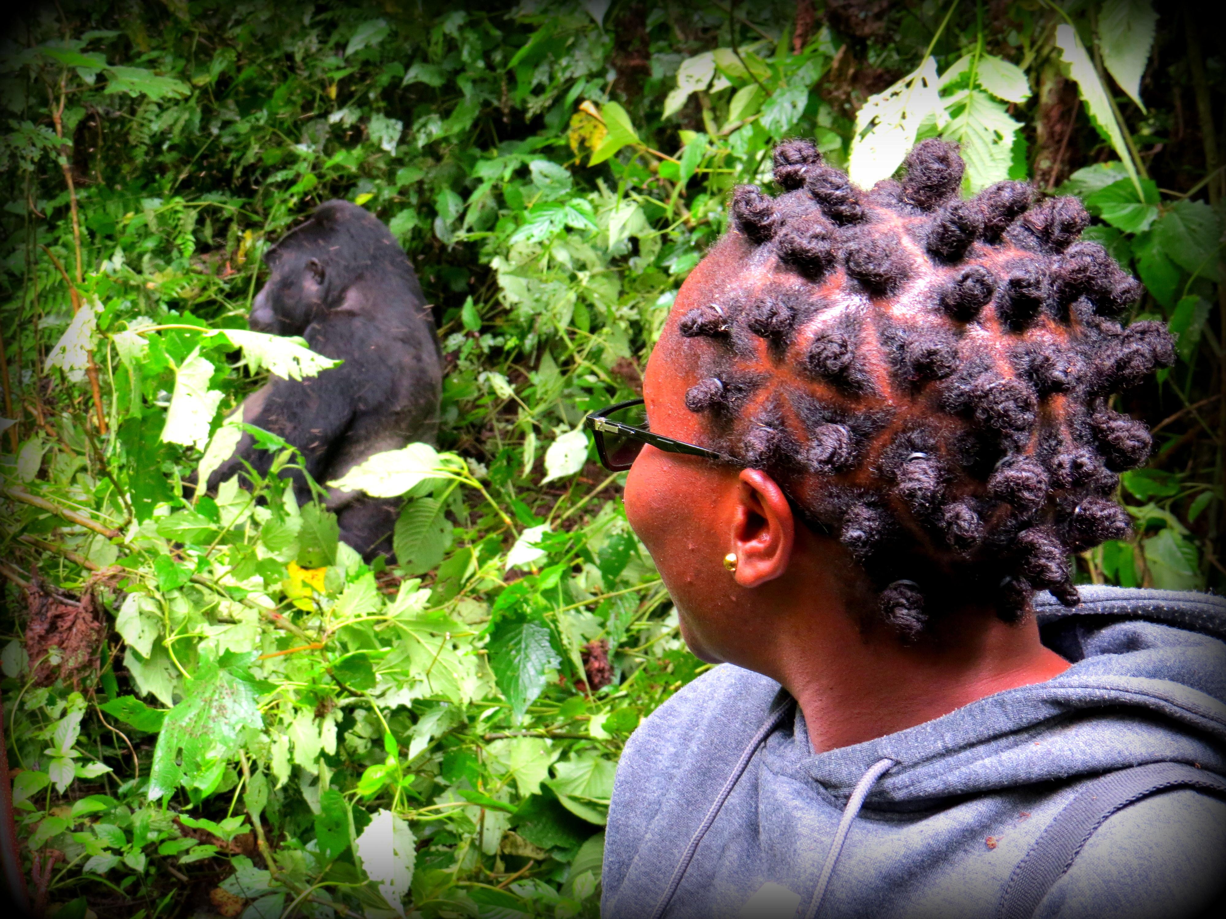 Gorilla Trekking in Uganda Via Rwanda