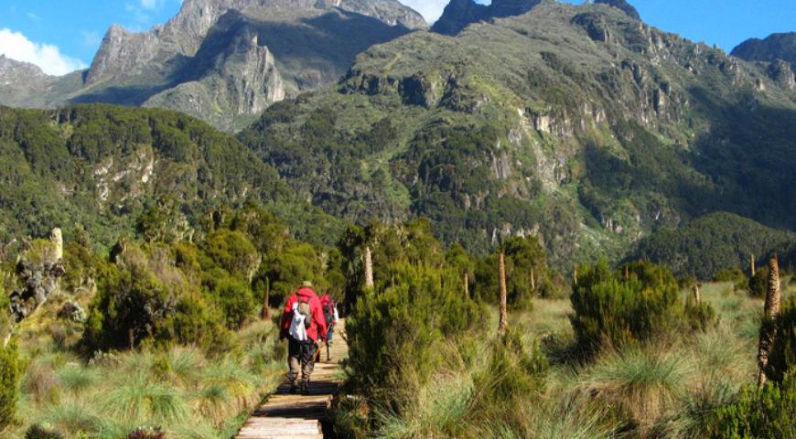 Hike Mount Elgon