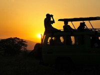 Kidepo Game drives- Top Activities to do in Kidepo National park