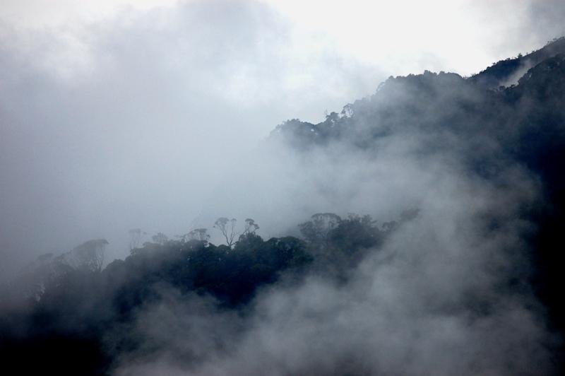 Rwenzori Mountains- 2020 Uganda Wildlife Safaris