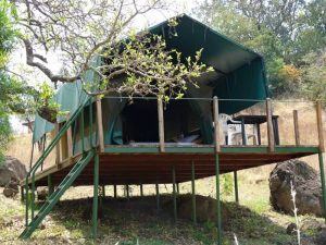 Tent-at-Pian-Upe-Wildlife-Reserve-Accommodation